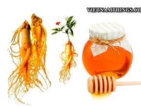 Vietnam import requirement of processed functional foods, Dietary supplements (like ginseng)